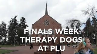 """During the stress of finals week ASPLU, in partnership with Therapy Dogs International had some of their furry comfort friends to lend a """"paw"""" to the PLU student body who might need a break from the rigors of studying."""