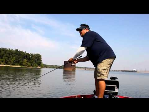 Which Lures for Fishing Fall Transition