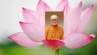 Lễ phát tang Tang lễ Trưởng lão HT. Thích Hiển Pháp 16-11-2018