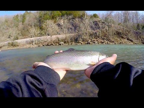 Clear Water Trout Fishing- Catch Cook_A héten feltöltött legjobb horgász videók