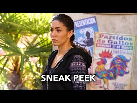 Marvel's Agents of S.H.I.E.L.D. 3.11 (Clip 2)