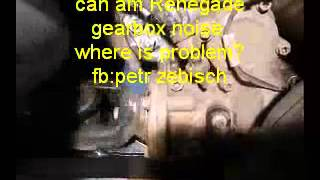 10. can am Renegade gear box noise