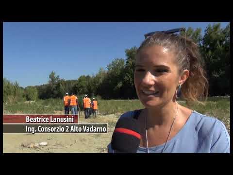 """Migranti """"bonificatori"""" puliscono gli argini dell'Arno in Valdarno"""