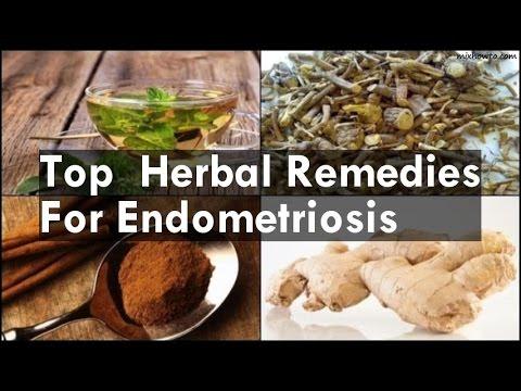 Video Remedies For Endometriosis download in MP3, 3GP, MP4, WEBM, AVI, FLV January 2017
