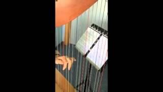 Tema tratto Sonata in La di W. Mozart