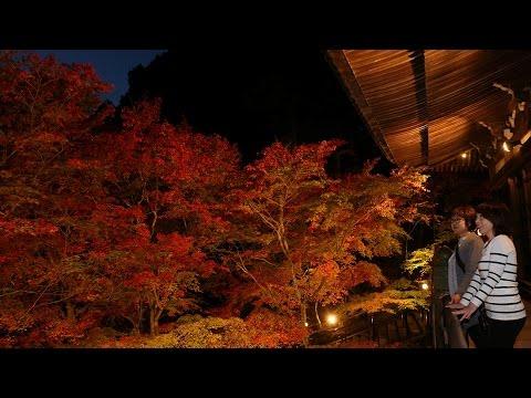 紅に染まる播州清水寺