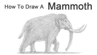 Видео: как нарисовать мамонта (подробный урок)