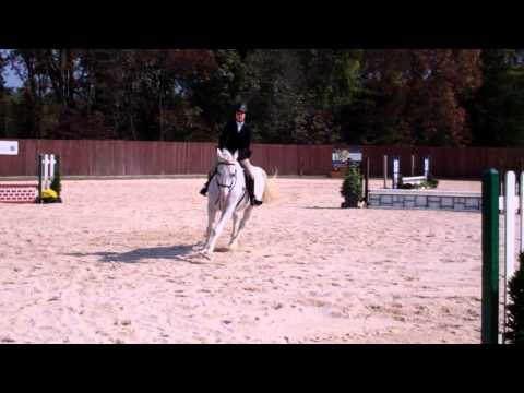 Alison Radgowski's Winning Round in Intermediate Fences - 10/6/13