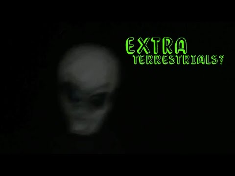 REAL Alien Sighting! | Jenni's Watching