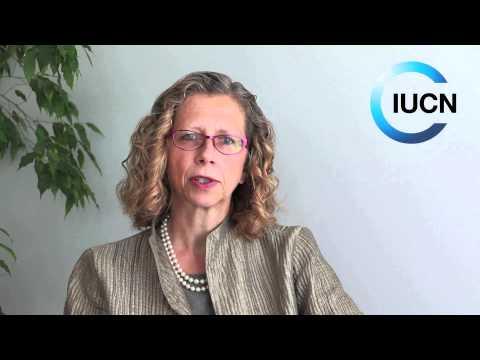 Inger Andersen - Eye on Earth Summit 2015
