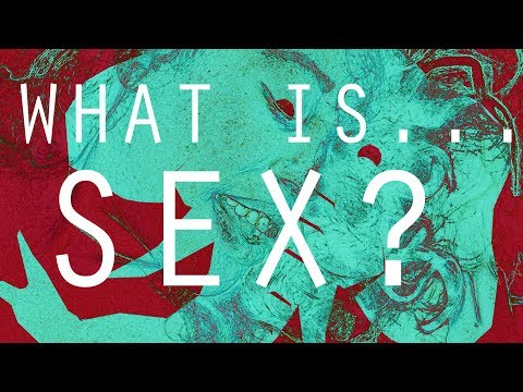 Episode 13: What Is...Sex?