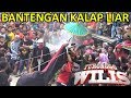 Download Lagu Bantengan Kalap Ngamuk Liar Ganas Polll | Turonggo Wilis Live Mbadug 2018 Mp3 Free