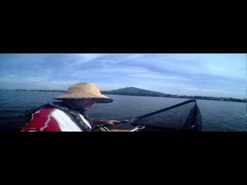 Shoalhaven Flattys 2.1