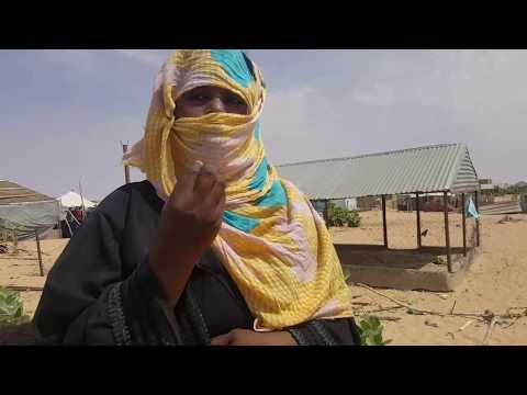 شمال روصو.. صيحات أرامل أقعدها الفقر ونسيتها السلطات