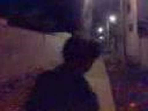 Unknown Creature in the Alley