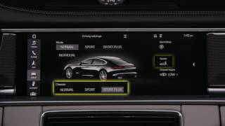 Porsche Communication Management System - PCM 4.1