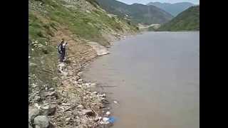 aynalı sazan avı artvin borçka