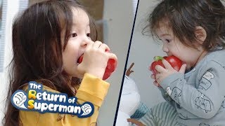 Video Gun Hoo Picks up a Red Bell Pepper~ What is Happening to His Tongue? [The Return of Superman Ep274] MP3, 3GP, MP4, WEBM, AVI, FLV April 2019