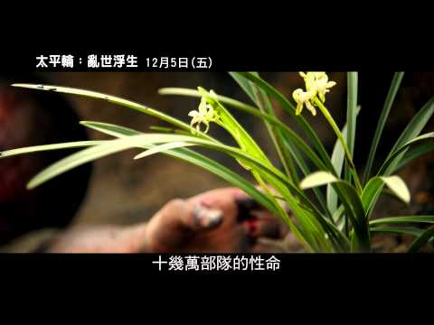 【太平輪:亂世浮生】預告 浮生愛戀篇