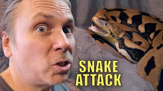 20 FOOT ANGRY SNAKE (Lucy) TRIES TO ATTACK ME!! Reptile Zoo Build Day #8 | BRIAN BARCZYK by Brian Barczyk