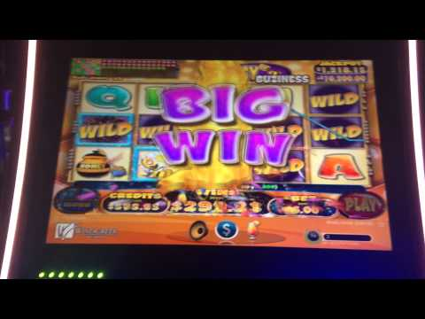 HONEY BUZINESS SLOT MACHINE BONUS BIG WIN MAX BET