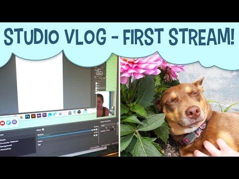 Studio Vlog  My First Twitch Stream!