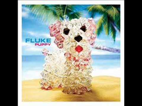Tekst piosenki Fluke - Snapshot po polsku