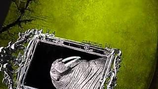 Video Tokyo Walrus