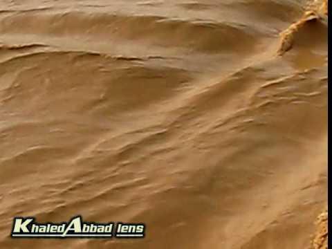 شعيب وادي الرمة في عنيزة(6)