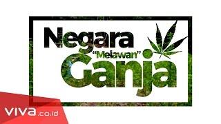 "Download Video Ganja ""Ekor Bajing"" Tanah Madina Indonesia MP3 3GP MP4"