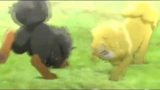 Nonton Toji The Golden Tibetan Mastiff Chinese Anime Trailer Film Subtitle Indonesia Streaming Movie Download