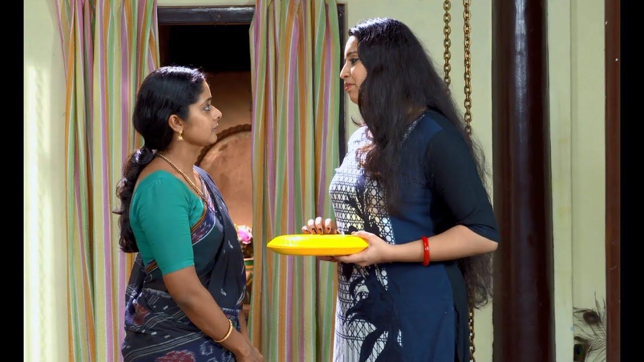 Sthreepadham May 25,2016 Epi 301 TV Serial