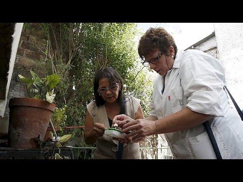 «Θα χρειαστούν χρόνια για το εμβόλιο κατά του ιού Ζίκα», λένε επιστήμονες