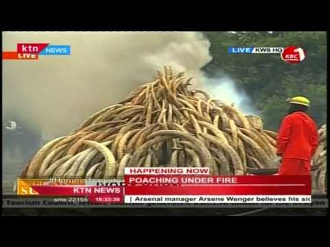 President Uhuru Addresses Local and International Press at the Ivory Burning Site