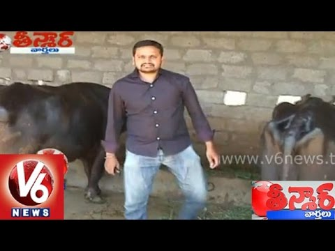MNC job holders resigned with intrest on Agriculture  Farming  Teenmaar News