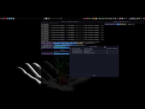 Release 2.0.2 Demo