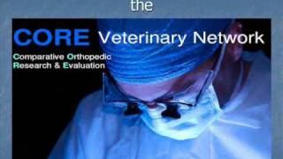 Bioscaffold Implant Procedure.wmv
