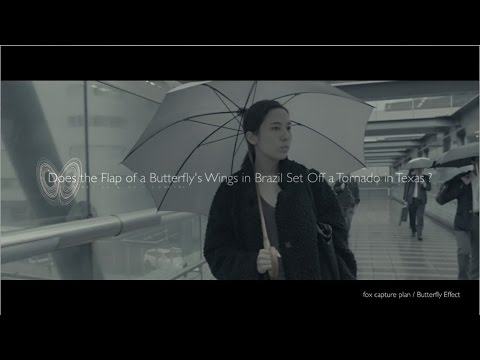 , title : 'fox capture plan / Butterfly Effect'