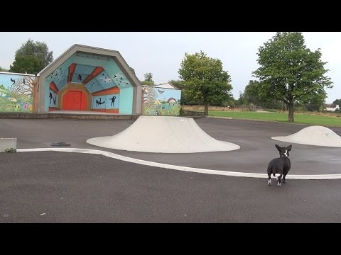 Snoopet 30 - Lordship Recreation Ground and Skatepark