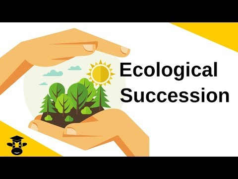 Ecological Succession-Primary and Secondary