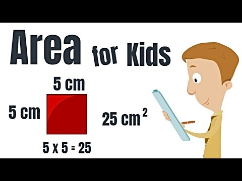 Area For Kids