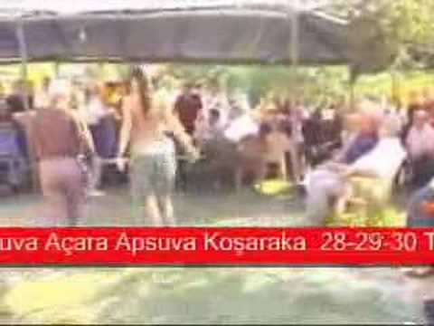 Düzce Büyük Bıçkı Yeşilyayla Köyü www.yesilyayla.net