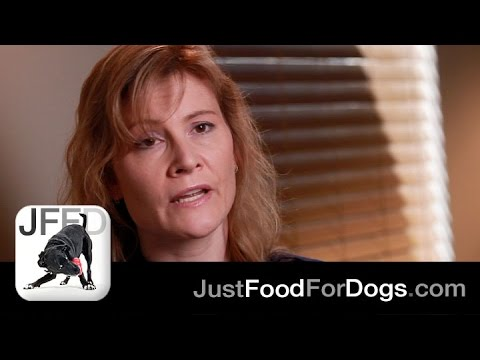 The Specialists: What does kidney disease in dogs feel like? | JustFoodForDogs