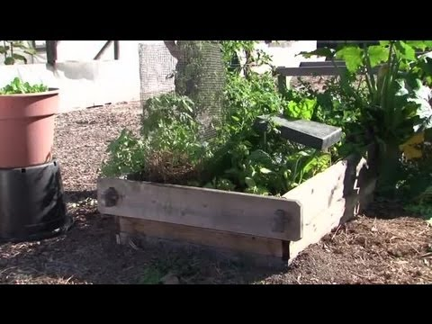 Plans to Build a Raised-Bed Garden : Raised-Bed Gardens