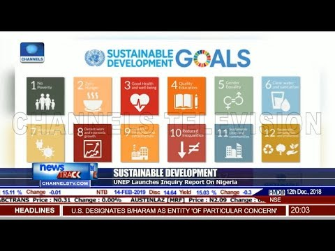 What Nigeria Is Doing To Achieve SDG Target-- UNEP Nigeria Prog Mgr