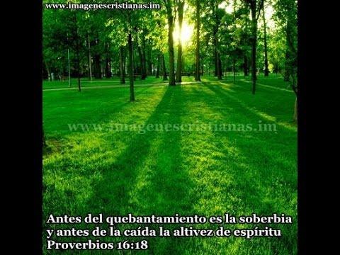 BIBLIA HABLADA(HECHOS),,,,, DE LOS APOSTOLES)COMPLETO Y CASTELLANO,VERSION REINA VALERA