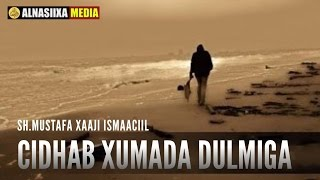 CIRIB XUMADA DULMIGA || Sh.Mustafa Xaaji Ismaaciil full download video download mp3 download music download