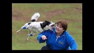 New Whatsapp Most Funny Videos 2017   Latest Whatsapp Best Video All Time   Try Not to Laugh