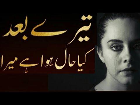 Tere Baad Kya Haal hua Hai Mera  Top Sad Quotes   By Syed Maqsood AnS