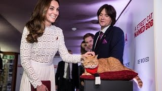Duchess of Cambridge meets street cat named Bob | 5 News